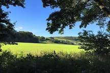 View across the fields from the river walk at LlanfairTH