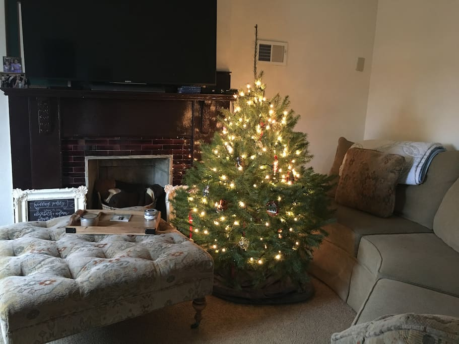 1 Bedroom Apartment In Quaint Pittsburgh Borough Apartments For Rent In Pittsburgh