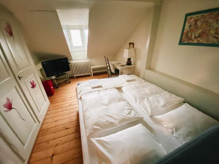 CityLodge St. Gallen - Economy Double Room
