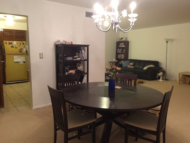 Spacious Private Room by Kellogg & Northwestern - Evanston - Condo