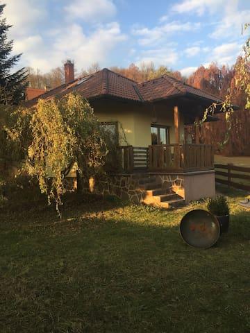Haus Nina - Mladá Vožice - Casa