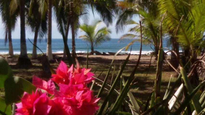 beach house Costa de Oro