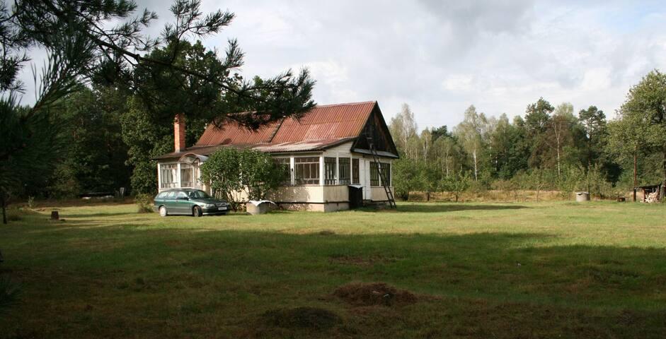«Арт-берлога» в сосновом лесу - Rahozna - Huis