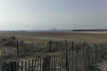 Agréable T2 50m plage