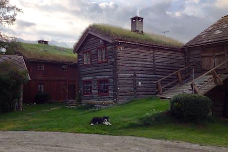 Sygard Snerle - Haus