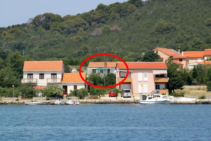 One bedroom apartment with terrace Verunić (Dugi otok) (A-8104-b)