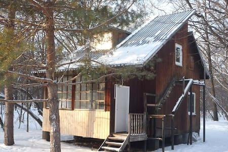 Cozy cottage - Kanuevka - Ev
