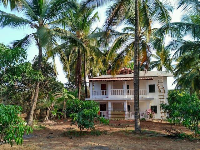Peaceful Housestay in Mandrem - Mandrem - Guesthouse