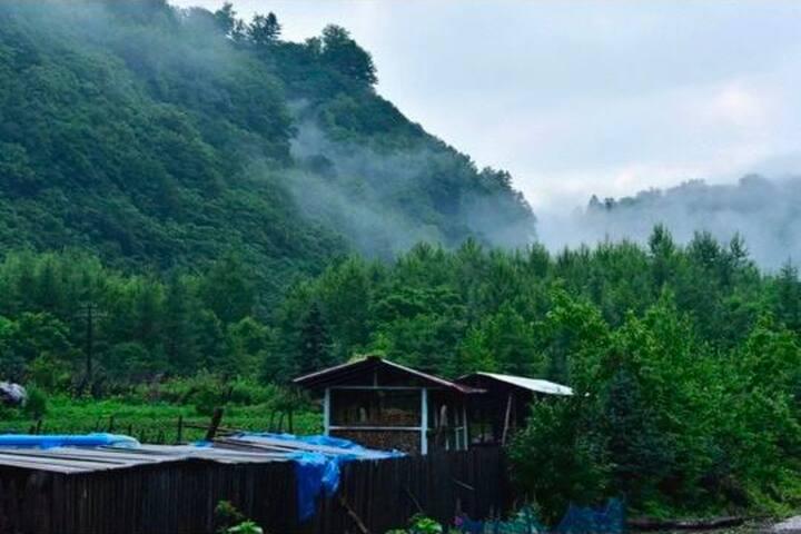 长白山脚下小村庄,归田园居,远离喧嚣,可烧烤,采摘,看狍子