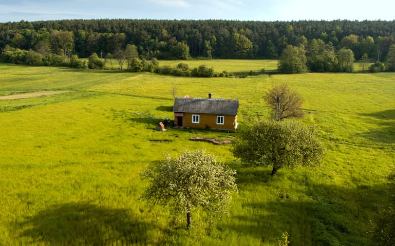 Lovely small wooden house surrounded by nature