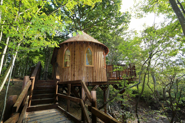 Enchanting Treehouse