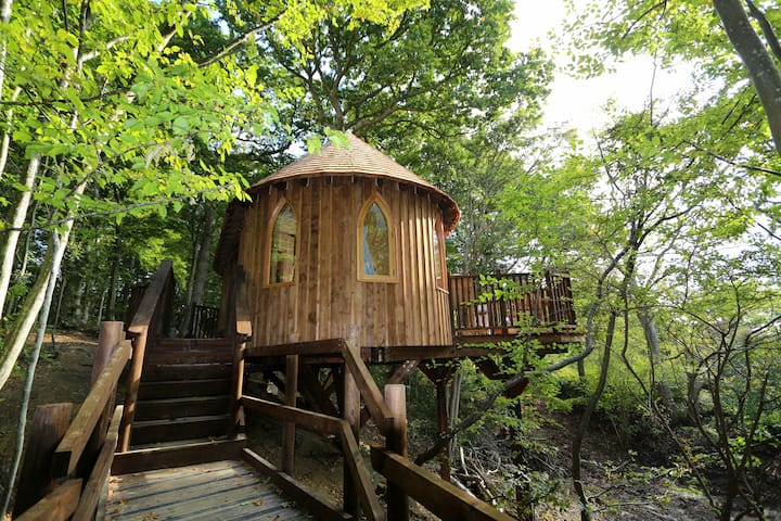 Luxurious, picture-perfect, stunning treehouse