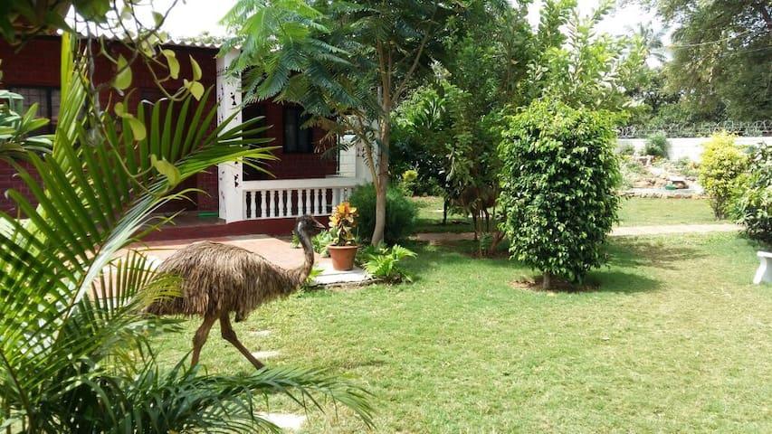 SitaDevii Farm