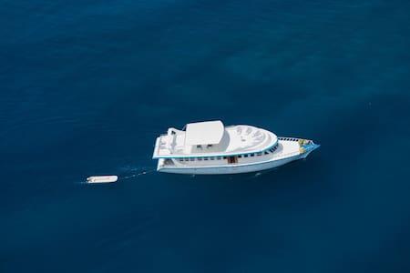 Maldives Boat Trips - Malé - Boot