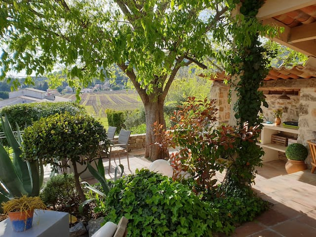 Unique cosy villa in Provence view to the wineyard