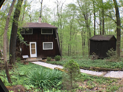 The Reed – A Quiet Cabin in the Woods