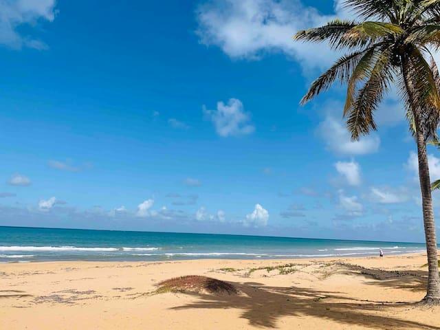 Ocean Front Property with Pool Near El Yunque
