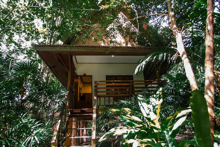 Private Bungalow in jungle vibes