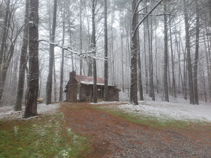 Remote cabin on 28 acres with wild life