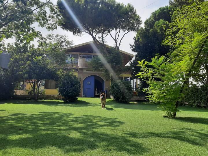 Beit Haifa Guesthouse, Koura, North Lebanon
