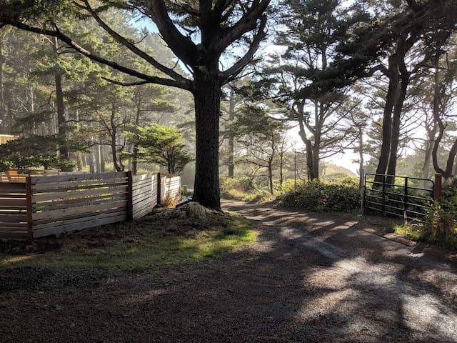 driveway/rd leading to beach path