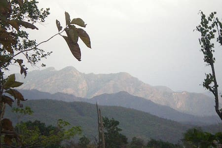 Oxygen - Forest / Hill View Nest - Dehradun