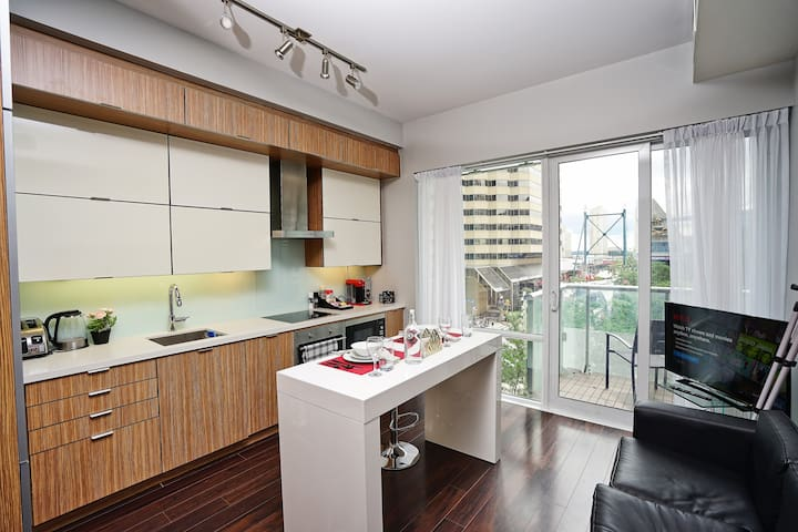 Attractive 1 BR by Scotiabank Arena and MTCC
