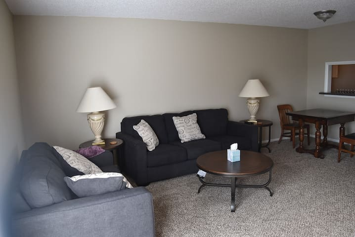 South Kansas City Condo, 2 bed/1.5bath,basement - Kansas City - Ortak mülk
