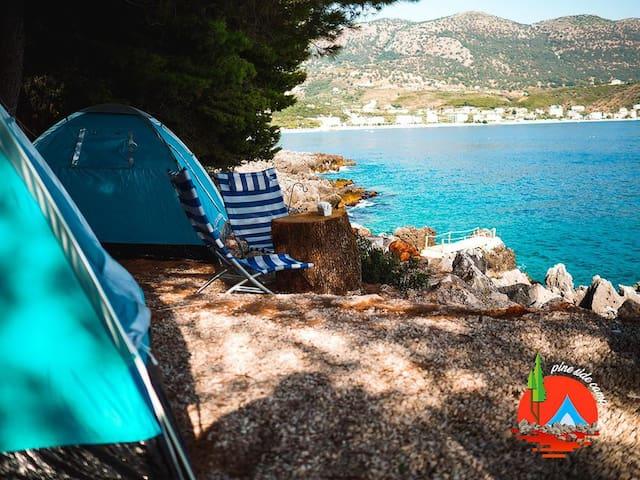 Pineside Camping