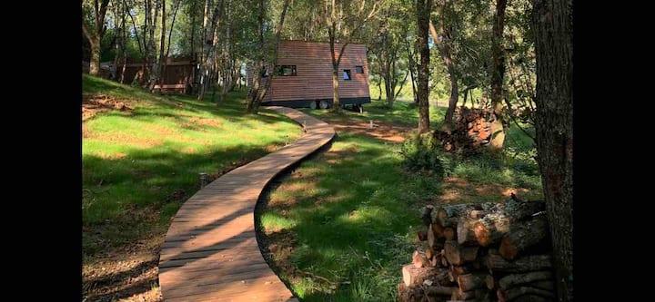 TINY HOUSE tout confort sur terrain boisé