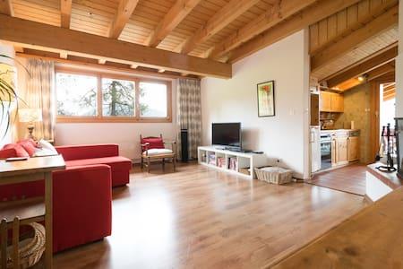 Colina Apt 403: Ski In/Ski Out Easy - Leysin - Lägenhet