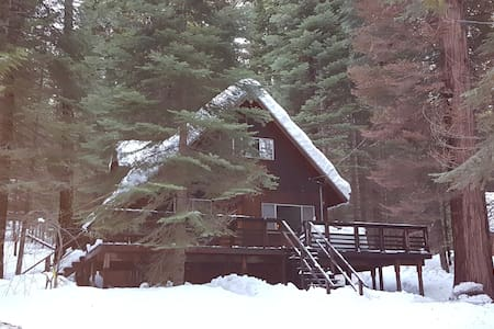 Cabin for Best Bang for Your Buck, sleeps 14