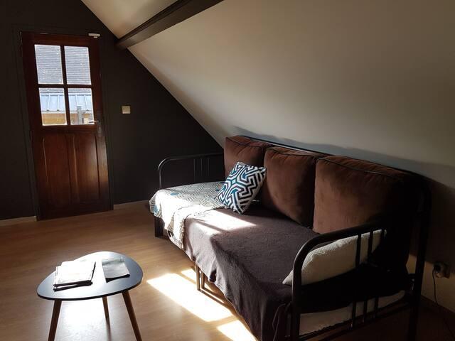 1ere pièce salon avec canapé convertible 2 personnes avec téléviseur