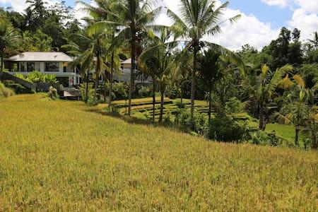 Serenity Ubud Villas @ Kenderan - Ubud - Villa