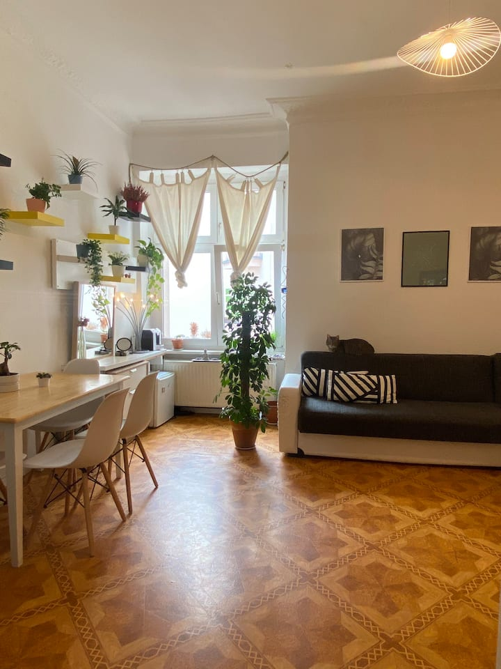 Well located Private room in Prenzlauer Berg