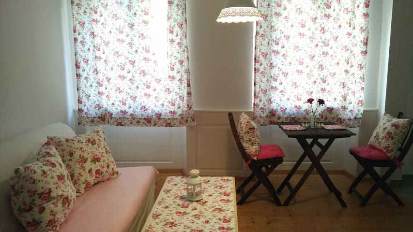 Schöne kleine Altbauwohnung im ganzen Zentrum - Freiburg im Breisgau - Wohnung