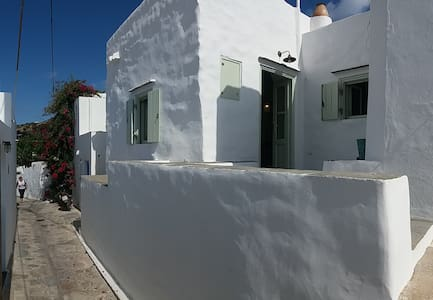 Artemonas mini - minimal house
