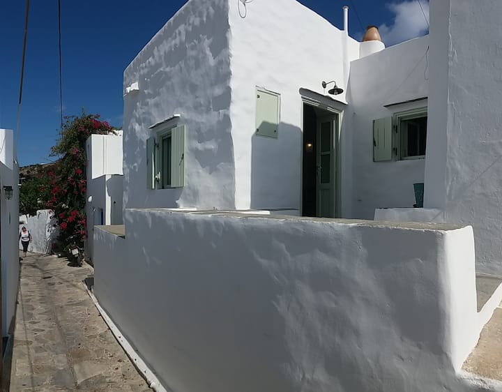 Artemonas mini - minimal house