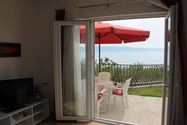 Single bedroom apartment with terrace - sea view