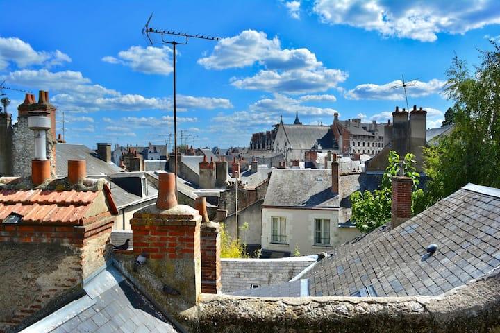 Studio cosy, vue sur le château et les toits