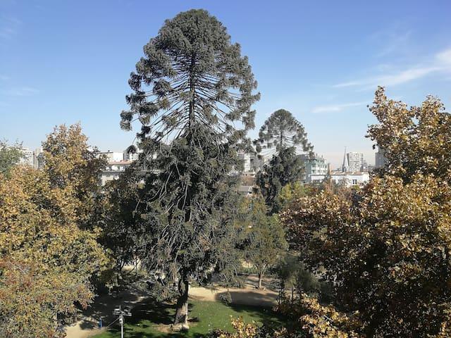 Precioso Departamento Parque Bustamante