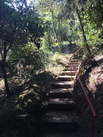 Gli scalini