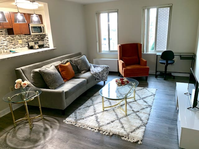 Modern One Bed Room Apartment - Between BWI and DC