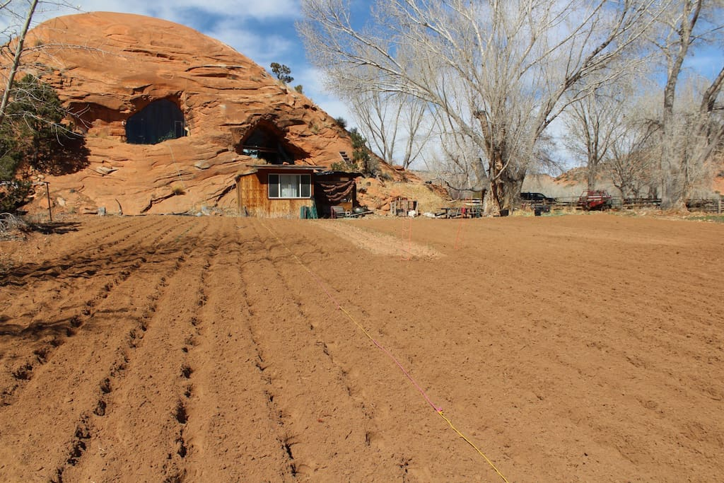 The Bed Rock House beyond 2018s future vegetable garden