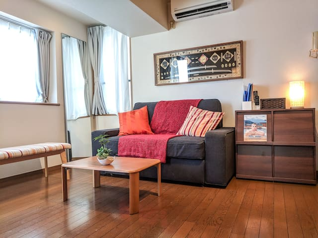 Large 75 SQ Meter Flat in Heart of Shimokitazawa