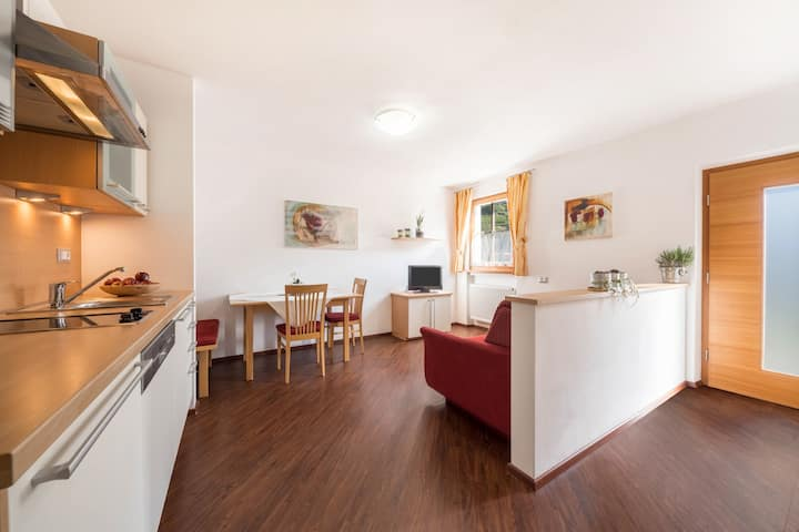 "Cosy holiday apartment ""Tischlerhof - Typ C"" with Wi-Fi and mountain view; parking available"