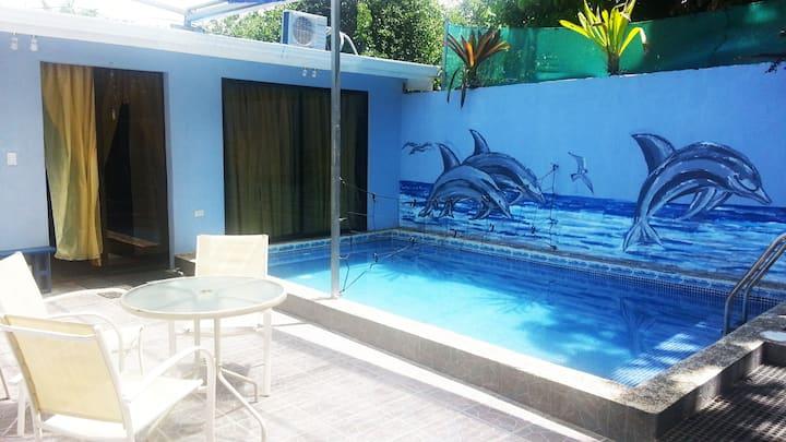 Delfines Azules, Blue Dolphins