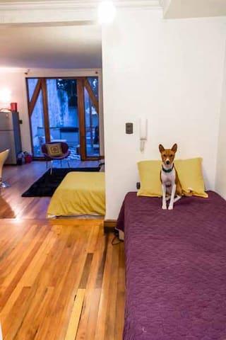 Un ambiente con 3 camas An environment with 3 beds
