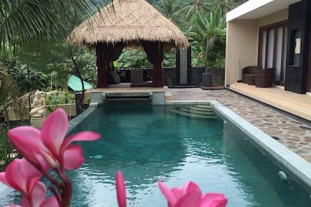 Beautiful Private Pool villa including breakfast - Villa
