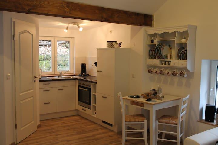 Liebevoll eingerichtete Wohnung in ruhiger Lage - Trier - Appartement